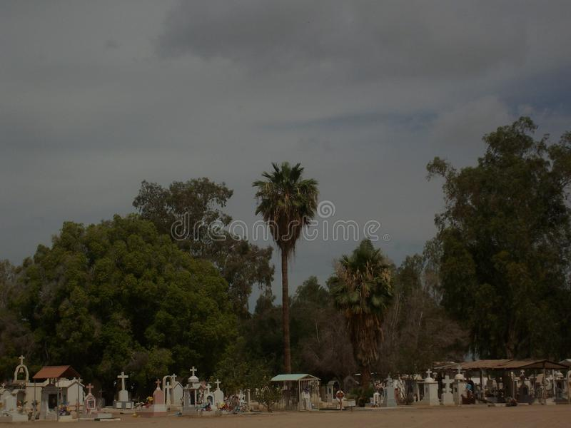 The Landscape of a cemetery royalty free stock images