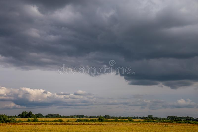 Landscape with cereal field, trees and cloudy blue sky royalty free stock photo