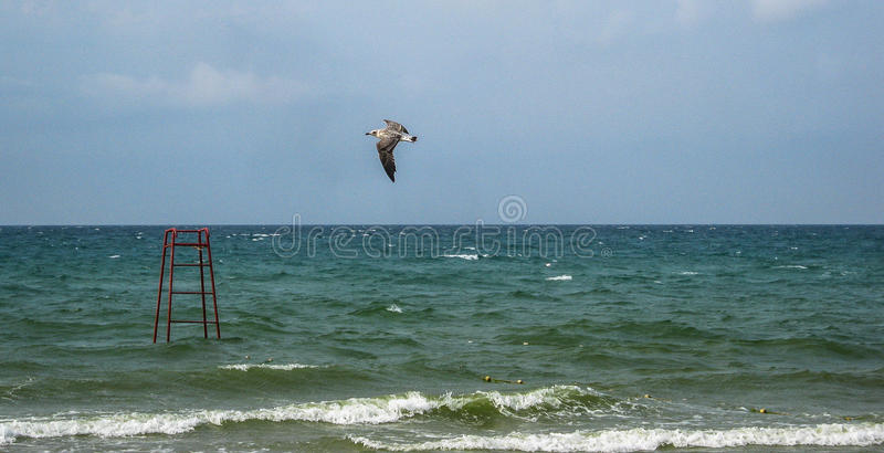 Landscape of the coast of the Crimea. royalty free stock photography