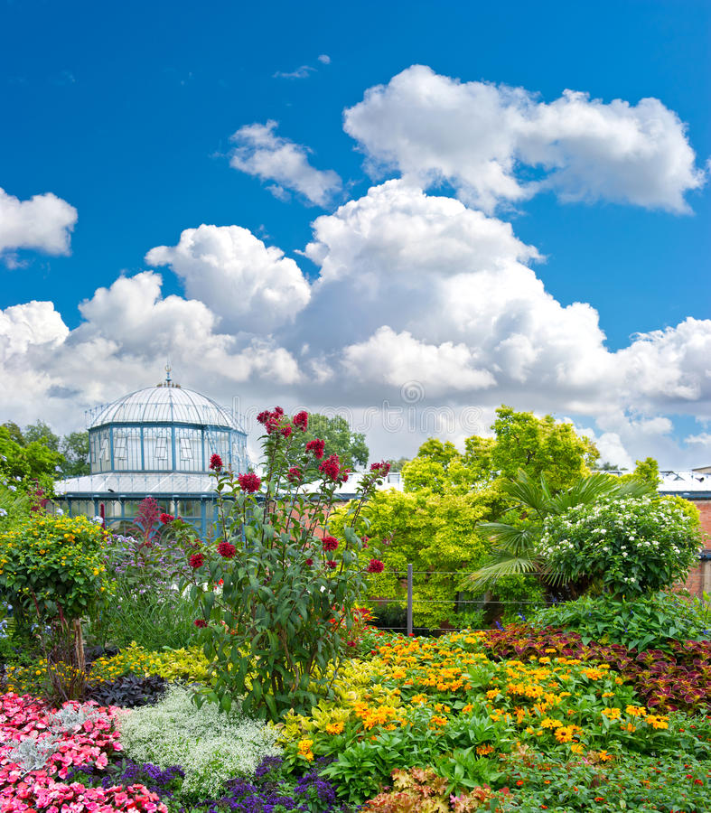 Landscape with colorful flowers and blue sky royalty free stock photo