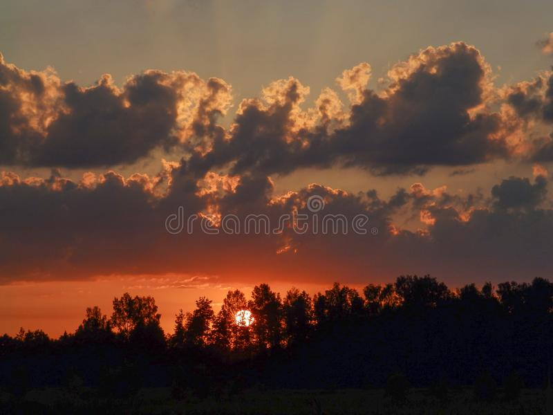Landscape with contrasting sunrise, fuzzy, black tree silhouettes, hazy clouds, red sky. And white sun stock photography