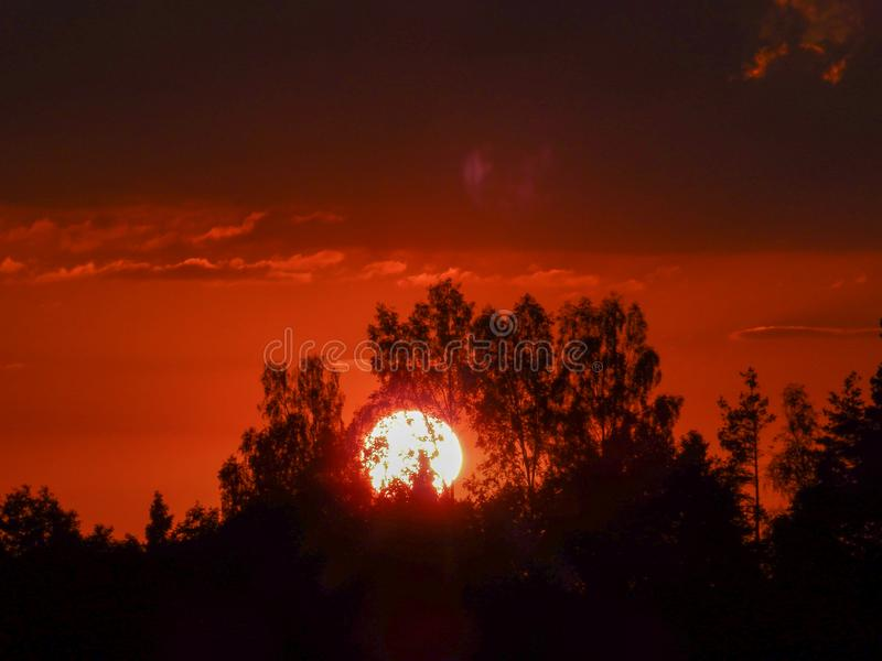 Landscape with contrasting sunrise, fuzzy, black tree silhouettes, hazy clouds, red sky. And white sun stock photos