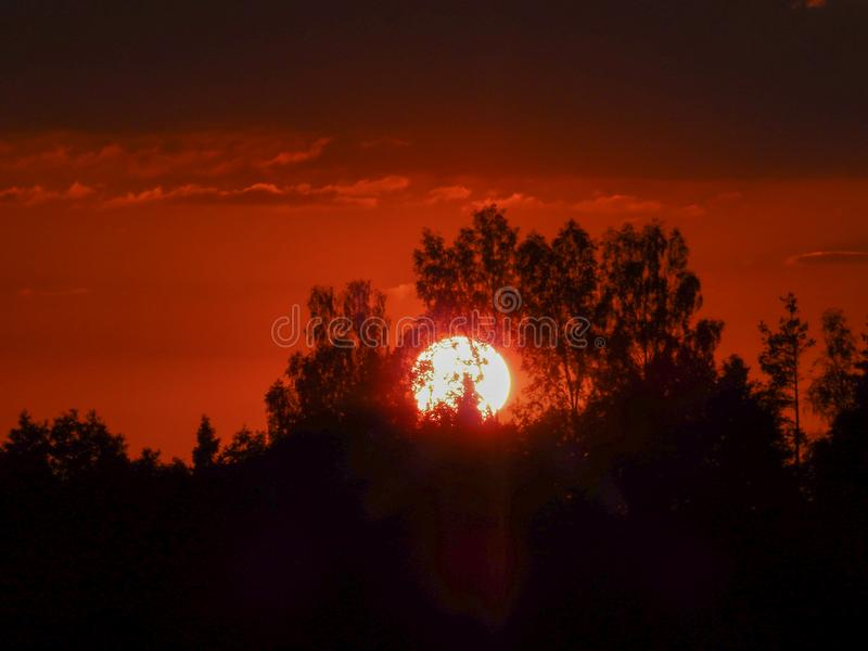Landscape with contrasting sunrise, fuzzy, black tree silhouettes, hazy clouds, red sky. And white sun royalty free stock photos