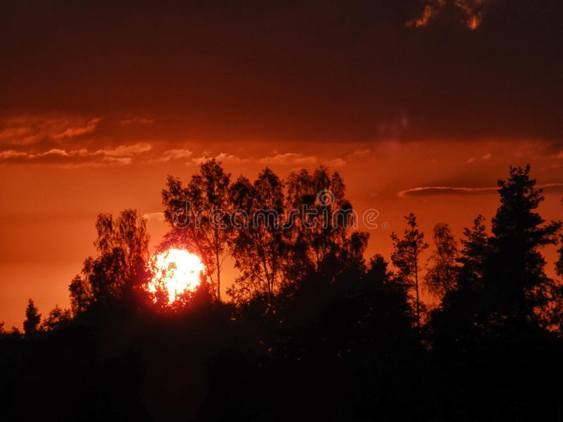 Landscape with contrasting sunrise, fuzzy, black tree silhouettes, hazy clouds, red sky. And white sun stock images