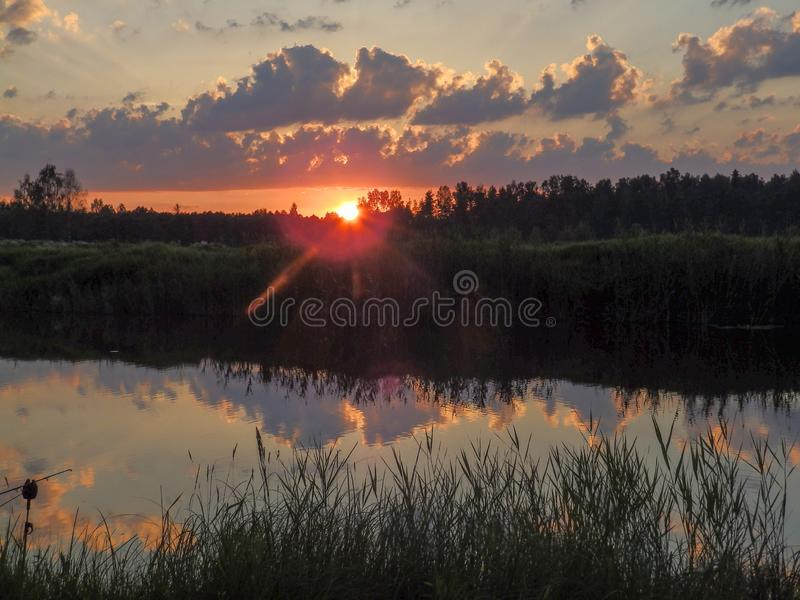 Landscape with contrasting sunrise, fuzzy, black tree silhouettes, hazy clouds, red sky. And white sun royalty free stock photography