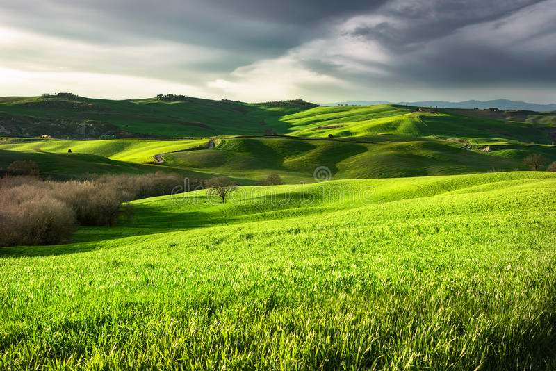 Download Landscape Of Countryside.Tuscany, Italy. Stock Photo - Image of beautiful, siena: 54366568