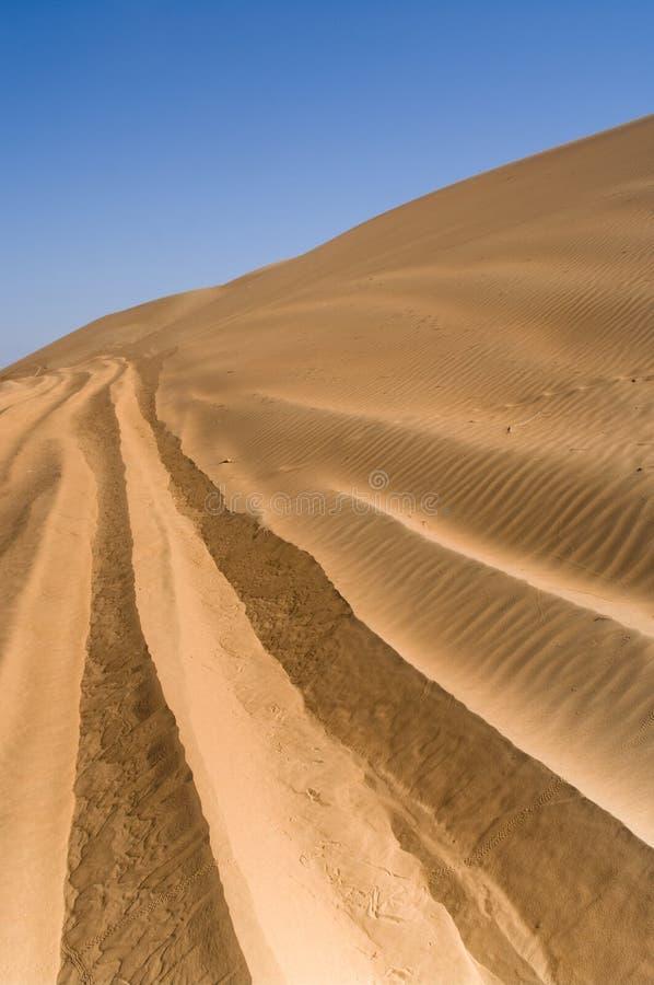 Landscape of Desert royalty free stock photos