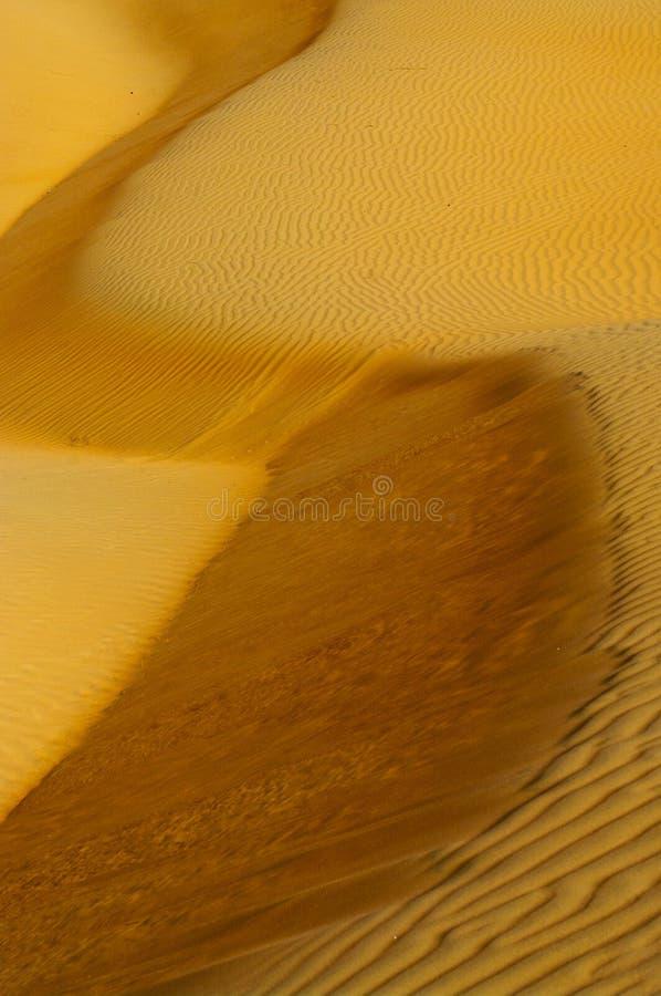 Landscape of Desert stock photos