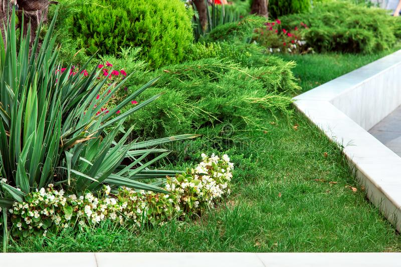 Landscape design with greenery flower beds. Landscape design with greenery flower beds framed around with white marble stock photo