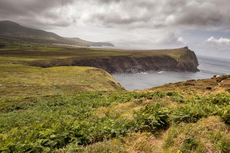 Landscape on Dingle peninsula. Scenic landscape on Dingle peninsula close to the village of Ballyferriter and the three sister hills, co Kerry, Ireland stock photos