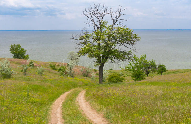 Landscape with an earth road down to Kakhovka Reservoir located on the Dnepr River, Ukraine stock images