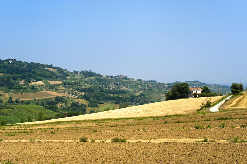 Download Landscape In Emilia Romagna (Italy) At Summer Stock Photo - Image of italian, nature: 21175210