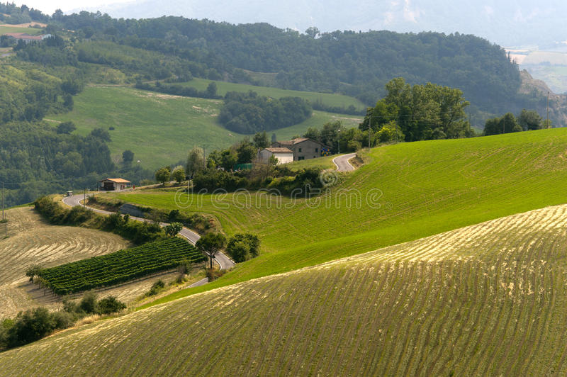 Landscape in Emilia-Romagna (Italy) at summer royalty free stock photography