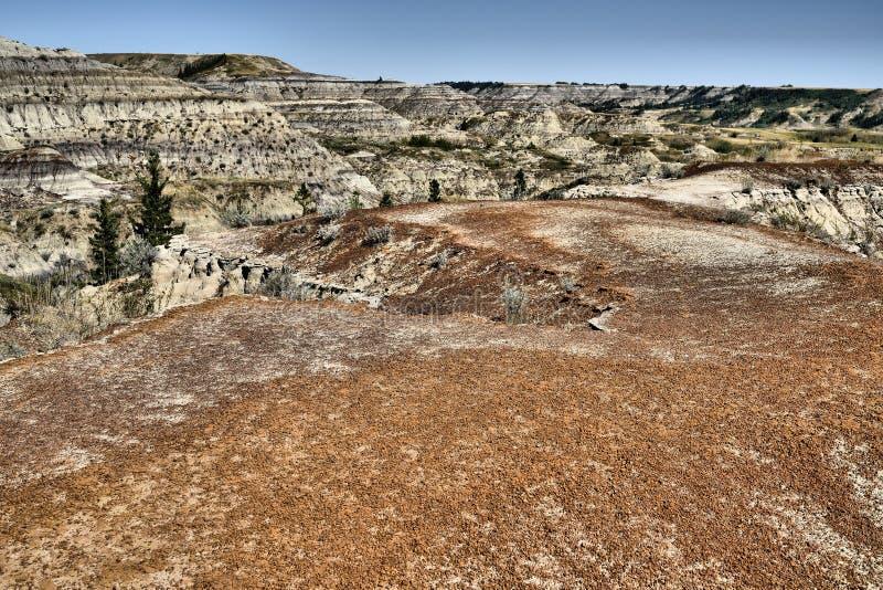 Dry Island Buffalo Jump Provincial Park Alberta stock images