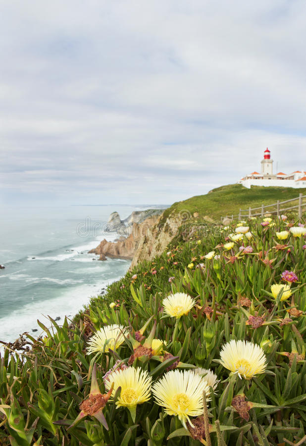 Landscape with flowers. Cape Roca. Portugal. The westernmost point of Europe. vertical stock image