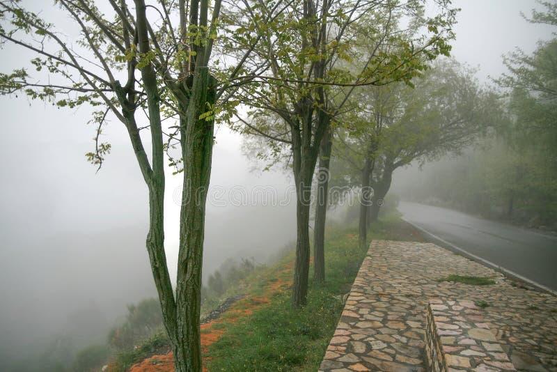 Landscape in Fog royalty free stock image