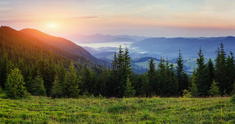 Landscape with fog in mountains sunset. Landscape with fog in mountains and rows of trees at sunset royalty free stock photography