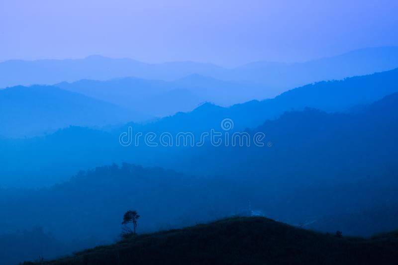 The landscape of foggy autumn forest valley, mystical valley background. Pine trees silhouettes in a morning fog, blue colors.  royalty free stock image