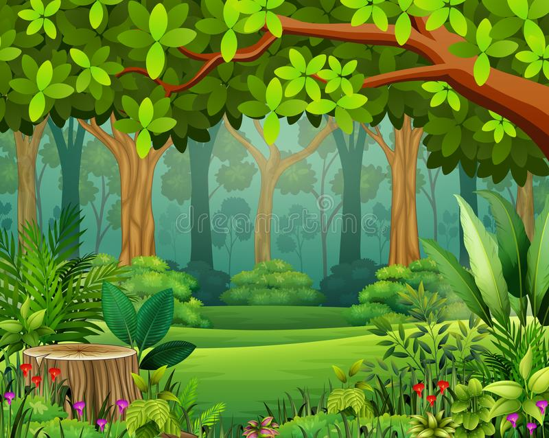 Landscape forest cartoon of green in spring royalty free illustration
