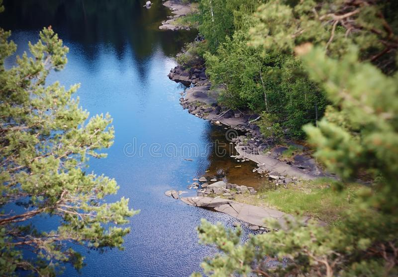 Landscape with forest lake covered with ripples and reflecting blue sky stock photography