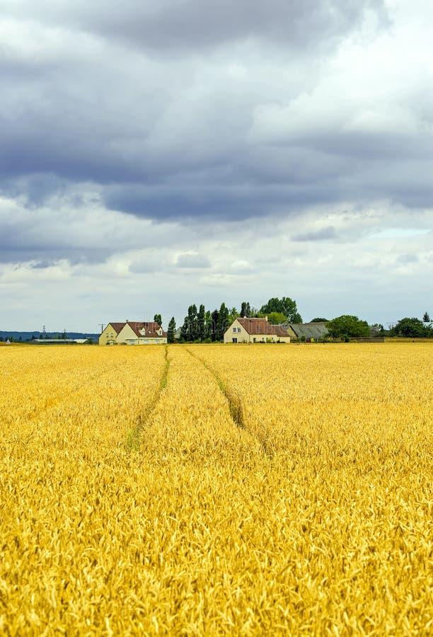 Download Landscape In France (Centre) Stock Photo - Image: 26689336