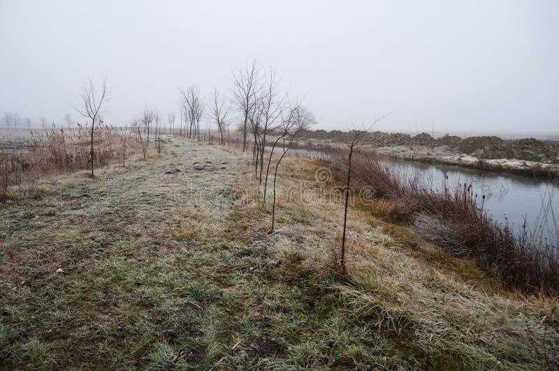 Winter morning stock image
