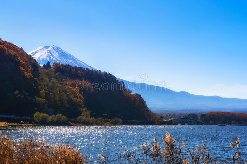 Landscape of fuji mountain with beautiful autumn leaves stock photography
