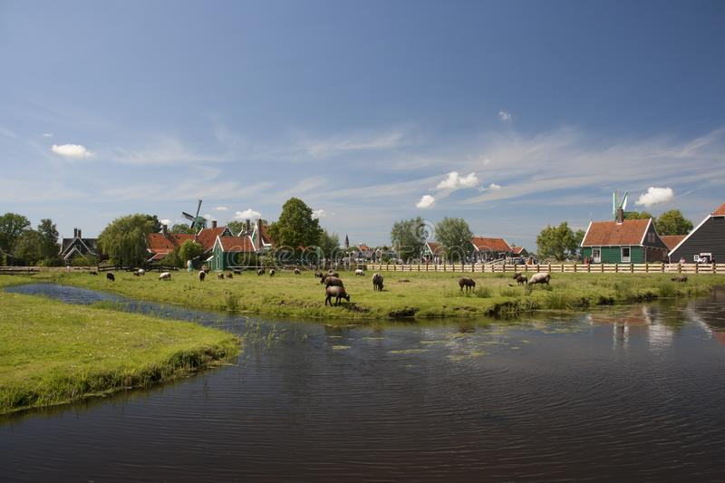 Landscape full of windmills in the countryside north of Amsterdam stock image