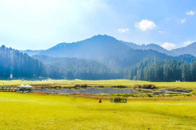 Landscape of grass field in park or garden surrounded with green tree and water pond this place for relaxing exercise running or w stock photography