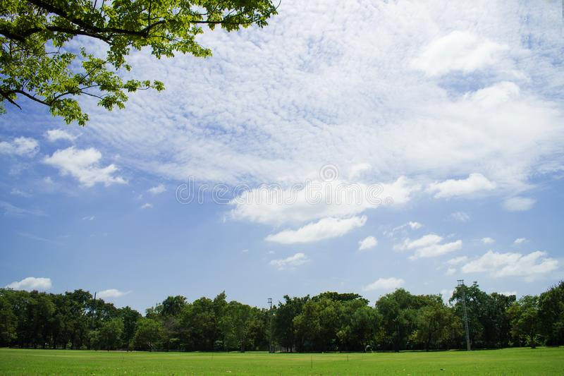 Landscape of grassland and beautiful sky in the park. Use as natural background.  royalty free stock images