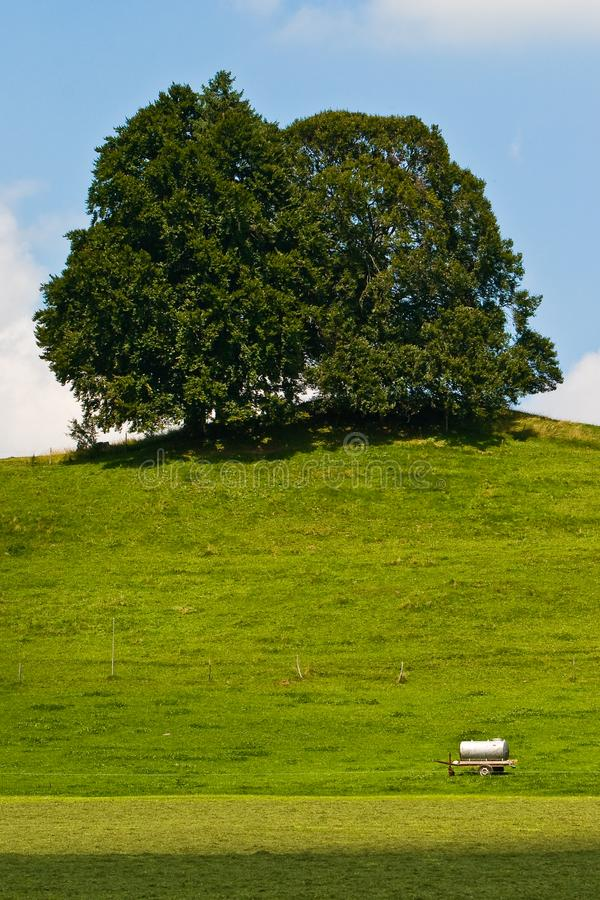 Download Landscape Of Grassland With Trees And Hill Stock Image - Image of tank, strasse: 10119969
