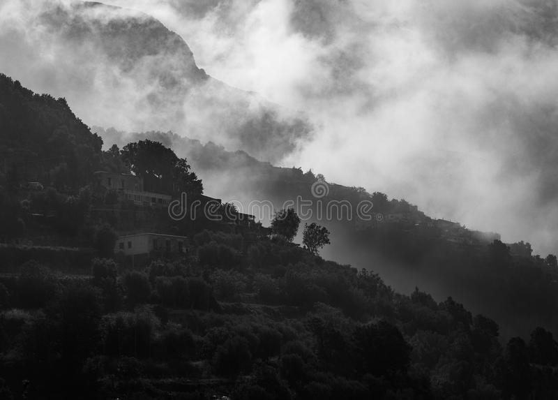 Landscape Grayscale Photography of Concrete Houses Surrounded With Trees stock photography