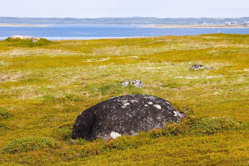 Download Landscape Of Greater Zayatsky Island Stock Image - Image of russia, boulders: 17172303