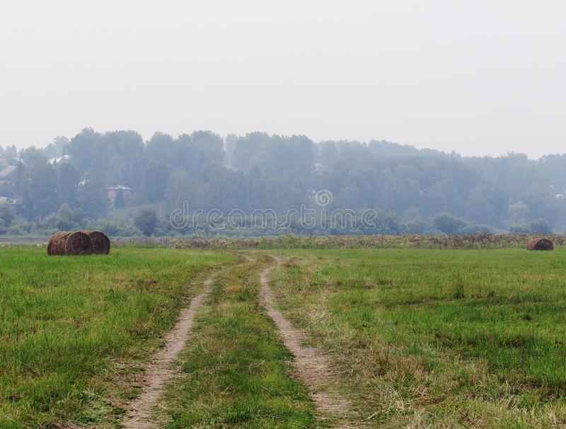 Landscape with green meadow, forest in the distance, country road and twisted haystacks stock photo