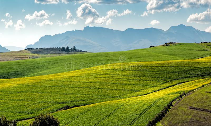 Landscape of green rolling hills in countryside royalty free stock photos