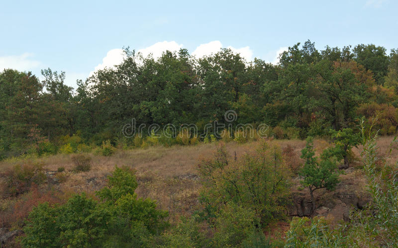 Landscape of green trees, mountains and valley royalty free stock photography