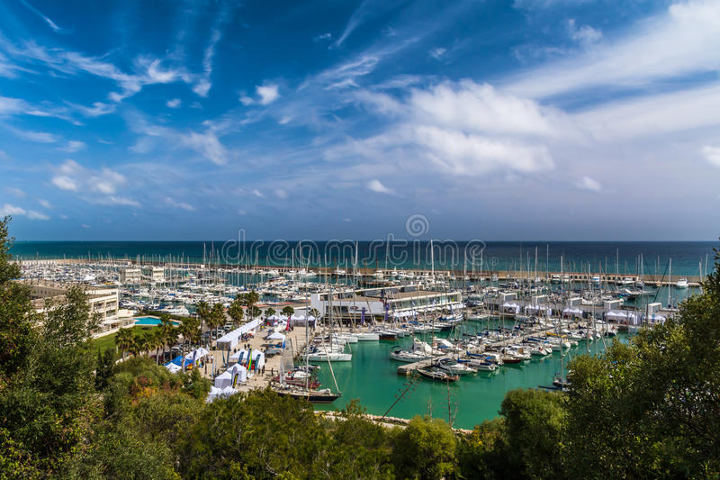 Landscape with green trees and sailing and pleasure boats harbour on background royalty free stock photography