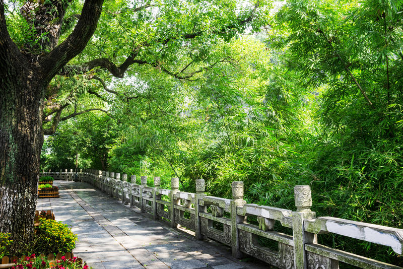 Download Landscape of guilin stock photo. Image of lawn, tree - 28700852