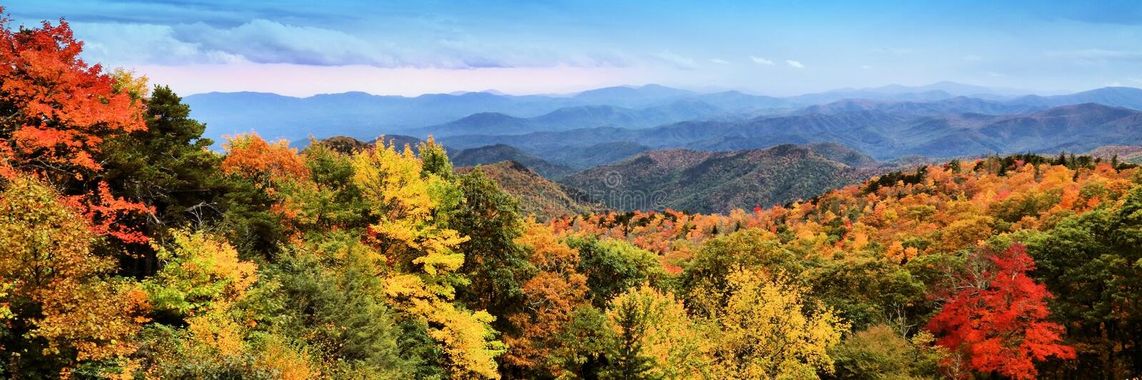 Brilliant peak autumn color of the Appalachian Mountains in North Carolina royalty free stock image