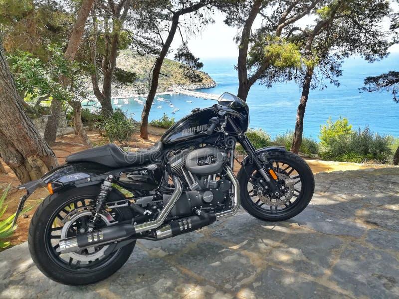 Landscape with Harley Davidson Sportster Roadster. Landscape with Harley royalty free stock images