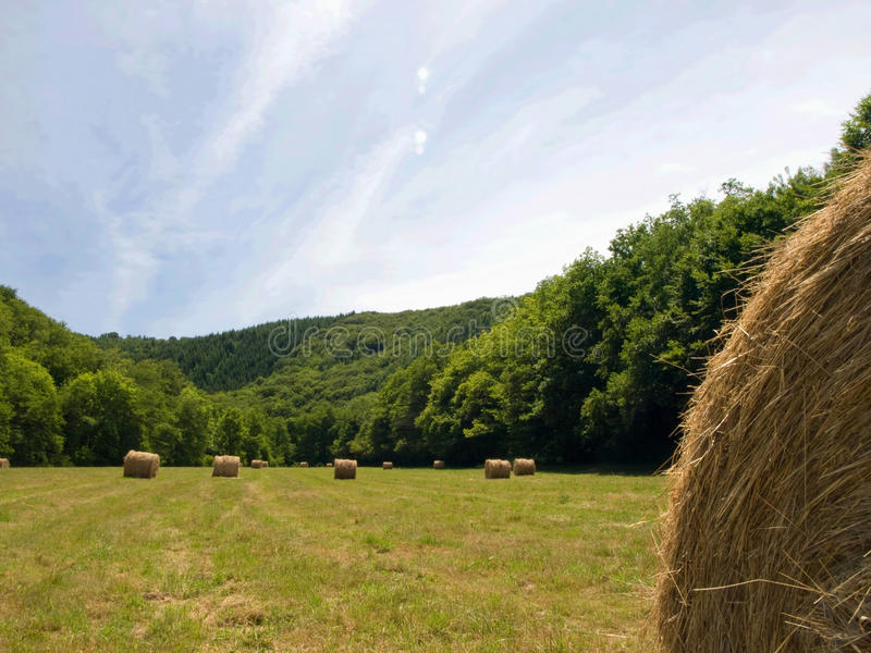 Download Landscape with haystacks stock image. Image of hayfield - 10284355
