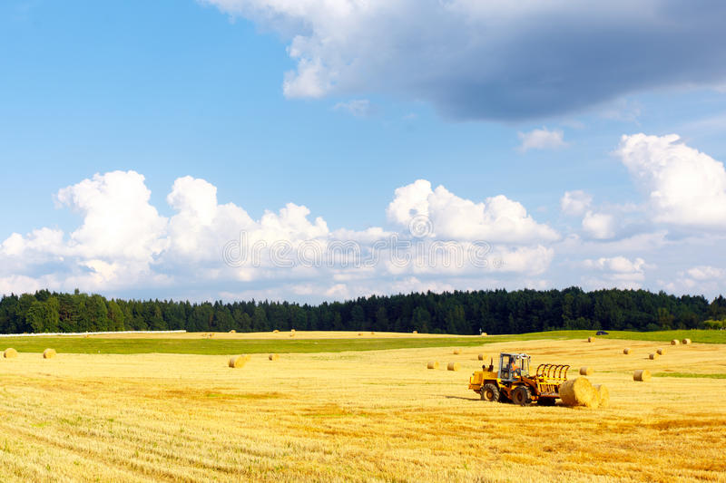 Landscape With A Haystacks On The Field Stock Images