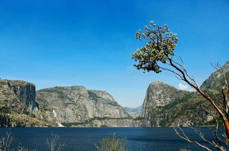 Landscape of Hetch hetchy Reservoir, Yosemite National Park. The beautiful and fabulous natural landscape of the Hetch hetchy Reservoir area of Yosemite National royalty free stock photos