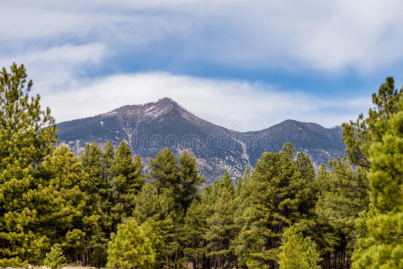 Landscape with Humphreys Peak Tallest in Arizona stock images