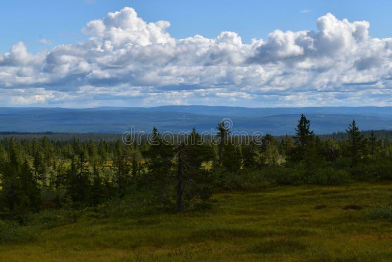 Landscape image in Løten Hedmark county Norway stock photos