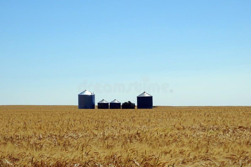 Prairie Landscape stock photography