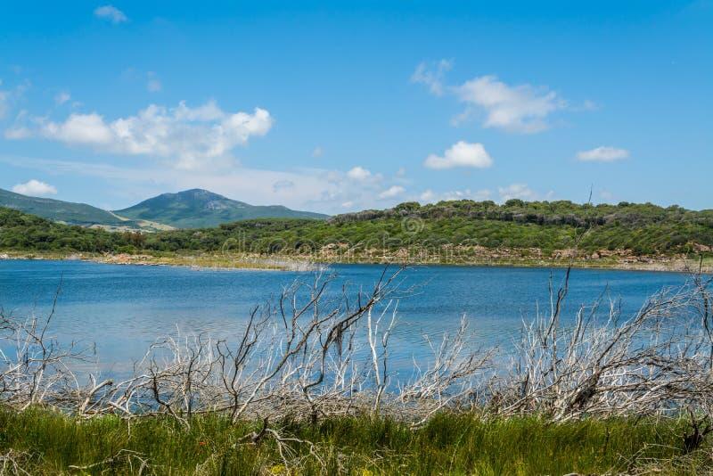 Landscape of Lake Baratz royalty free stock image