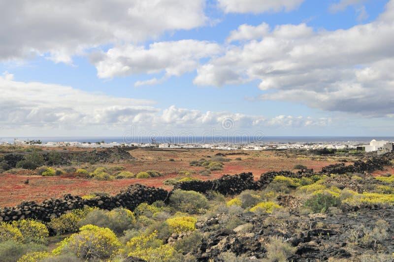 Landscape of Lanzarote Island royalty free stock photos