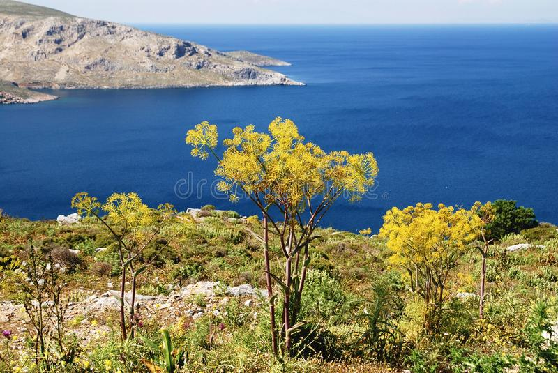 Landscape of Leros island, Dodecanese islands, Greece. Landscape of Leros island, Dodecanese islands, Greece with Aegean sea in the background stock photography