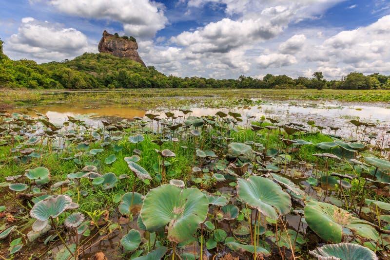 Landscape of lion rock and lake at Sigiriya, Sri Lanka royalty free stock image